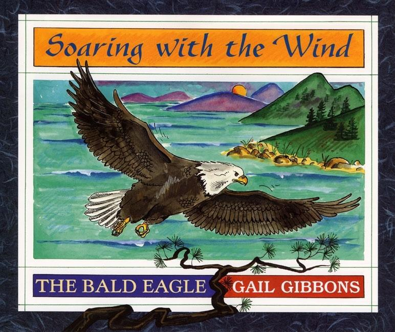Soaring with the Wind: The Bald Eagle