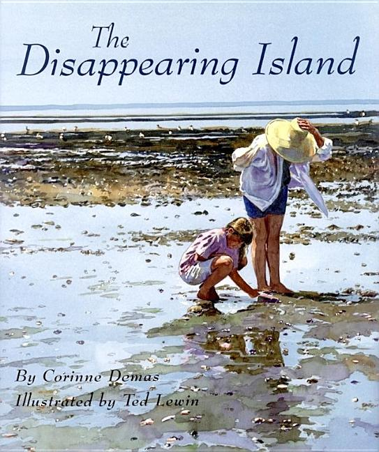 The Disappearing Island