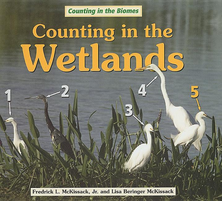 Counting in the Wetlands