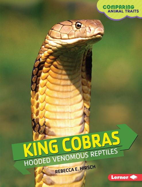 King Cobras: Hooded Venomous Reptiles