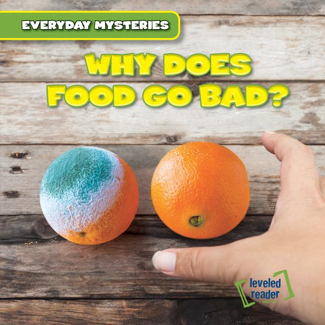 Why Does Food Go Bad?