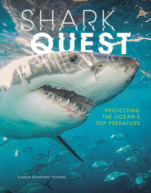 Shark Quest: Protecting the Ocean's Top Predators