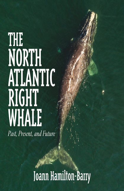 The North Atlantic Right Whale: Past, Present, and Future