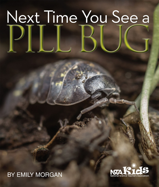 Next Time You See a Pill Bug