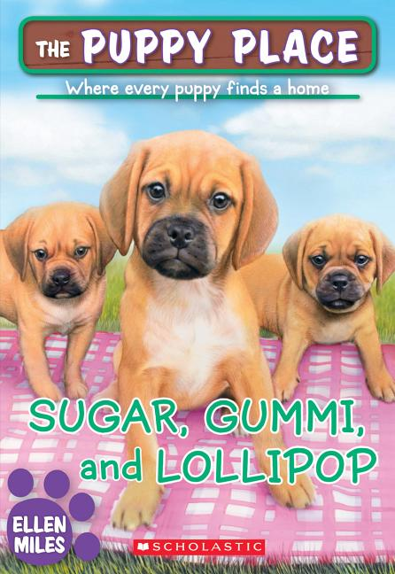 Sugar, Gummi and Lollipop