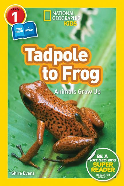 Tadpole to Frog: Animals Grow Up