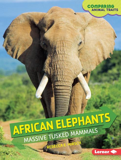 African Elephants: Massive Tusked Mammals