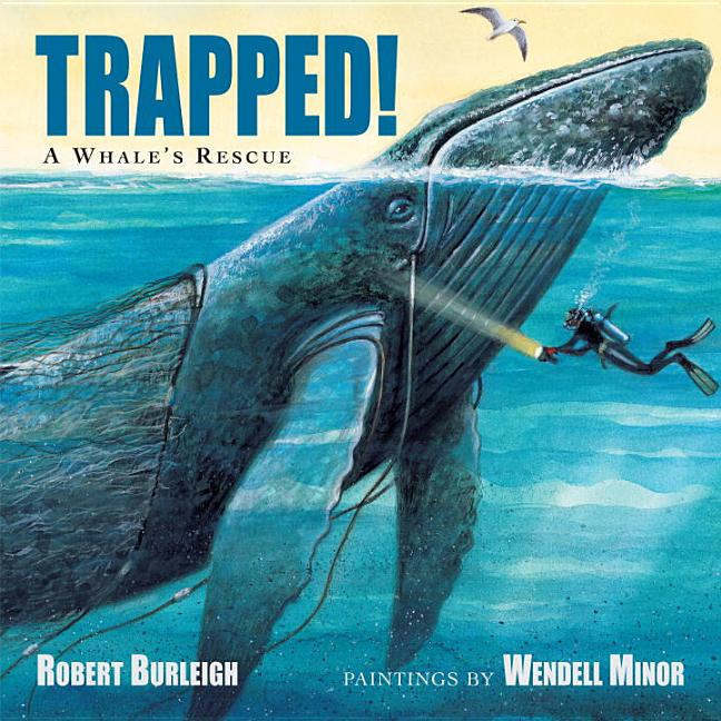 Trapped! A Whale's Rescue