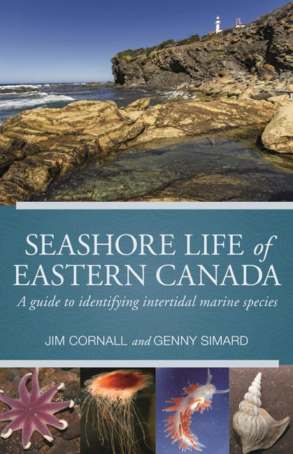 Seashore Life of Eastern Canada: A Guide to Identifying Intertidal Marine Species
