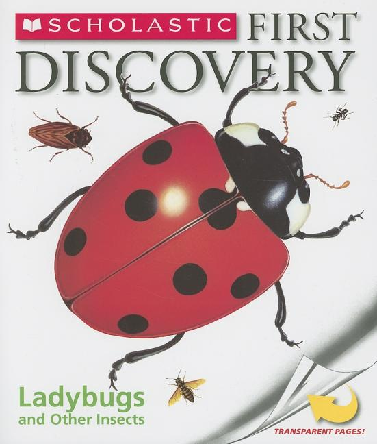 Ladybugs and Other Insects