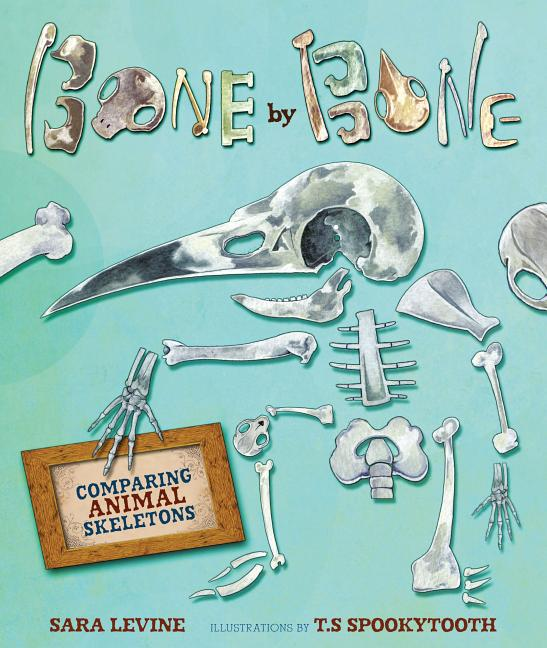 Bone by Bone: Comparing Animal Skeletons
