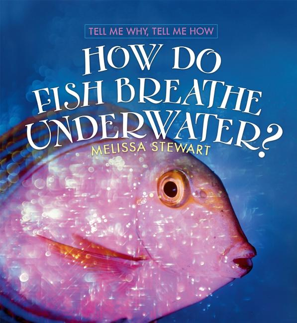 How Do Fish Breath Underwater?