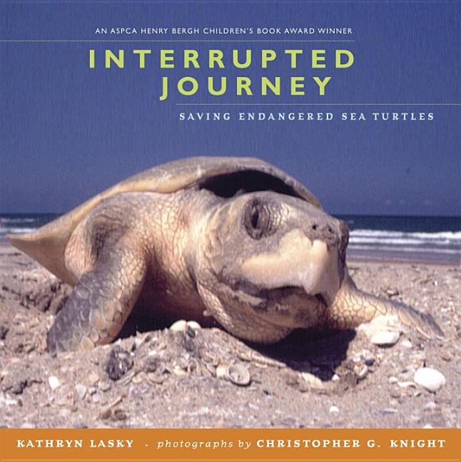 Interrupted Journey: Saving Endangered Sea Turtles