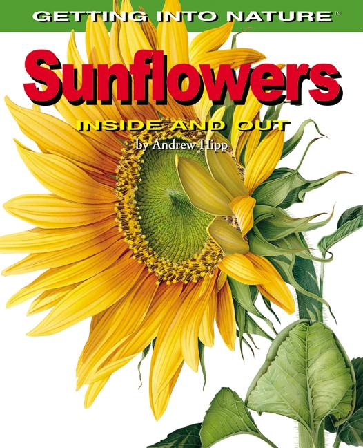 Sunflowers: Inside and Out