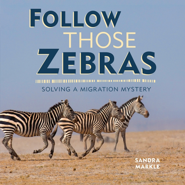Follow Those Zebras: Solving a Migration Mystery