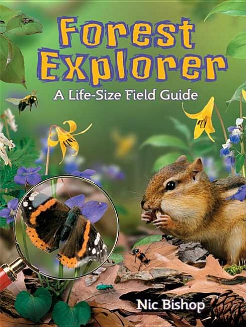 Forest Explorer: A Life-Sized Field Guide