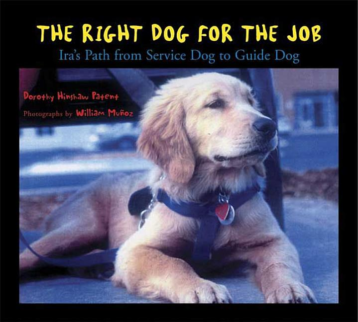 Right Dog for the Job: Ira's Path from Service Dog to Guide Dog