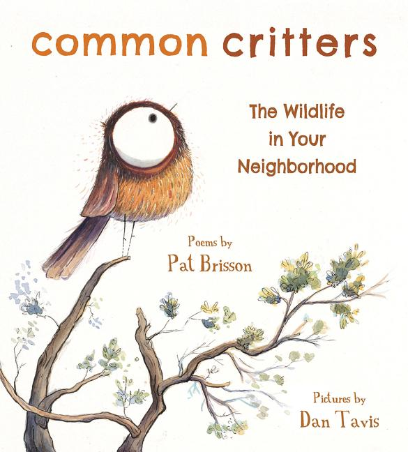 Common Critters: The Wildlife in Your Neighborhood