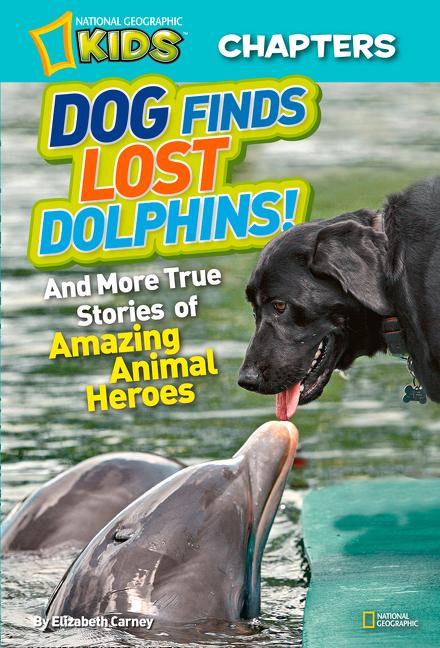 Dog Finds Lost Dolphins!: And More True Stories of Amazing Animal Heroes