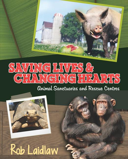 Saving Lives and Changing Hearts: Animal Sanctuaries and Rescue Centers