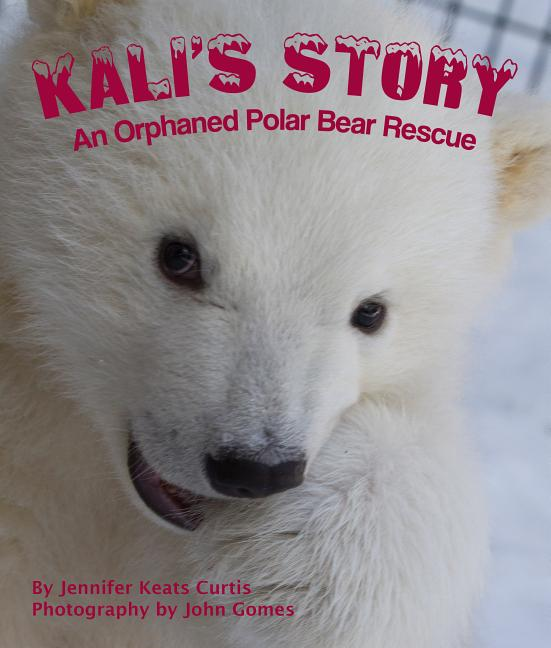 Kali's Story: An Orphaned Polar Bear Rescue