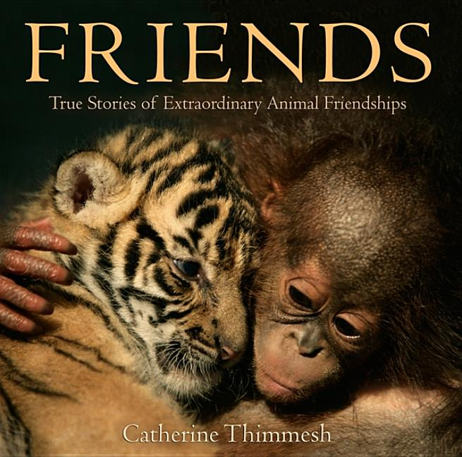 Friends: True Stories of Extraordinary Friendships