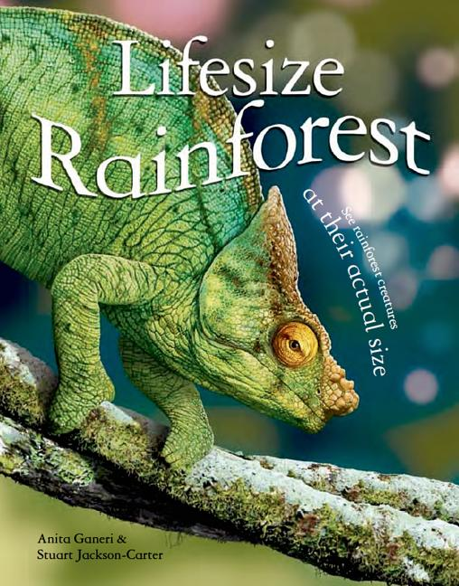 Rainforest: See Rainforest Creatures at Their Actual Size