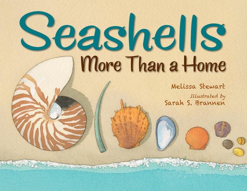 Seashells: More Than a Home