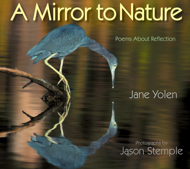 Mirror to Nature: Poems about Reflection