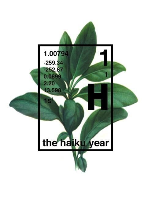 The Haiku Year