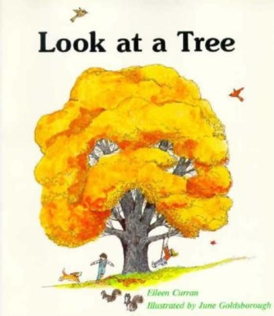 Look at a Tree