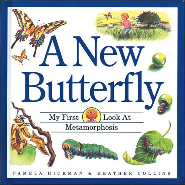 A New Butterfly