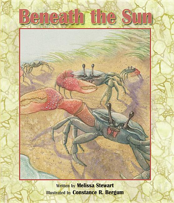 Beneath the Sun
