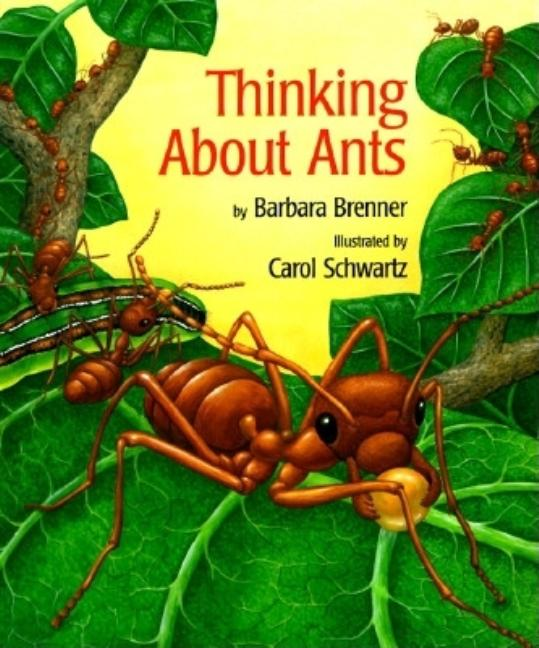 Thinking about Ants