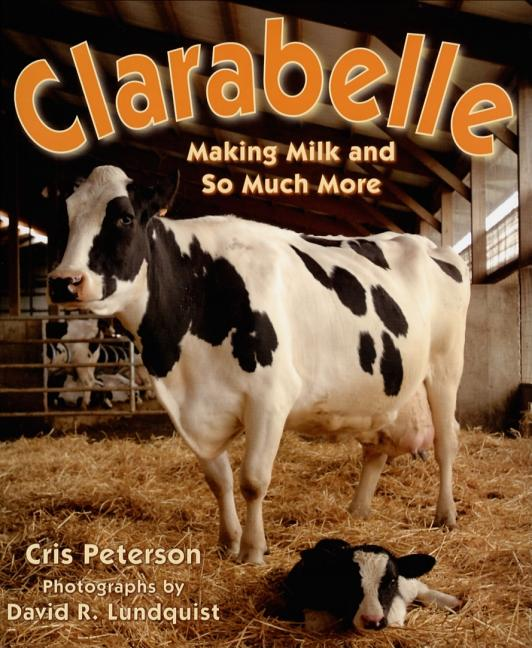 Clarabelle: Making Milk and So Much More