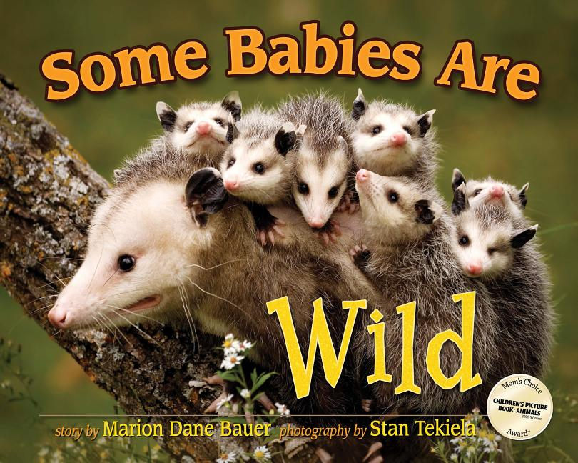 Some Babies Are Wild