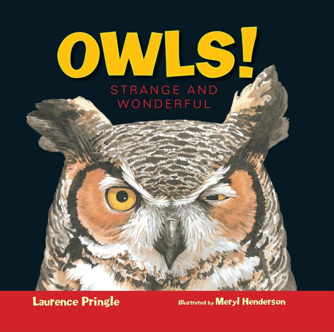 Owls!: Strange and Wonderful