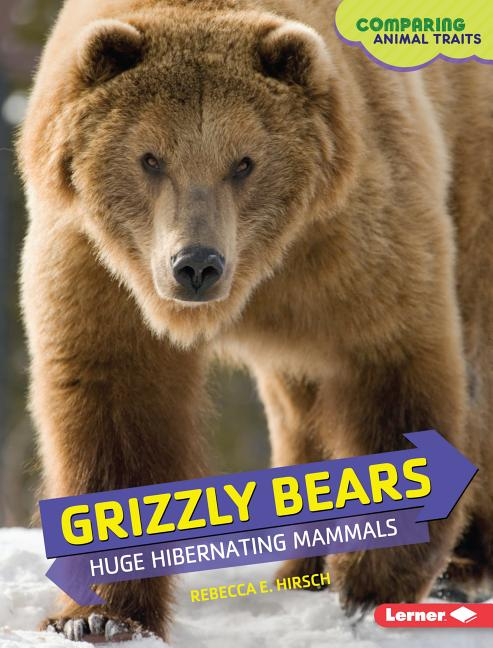 Grizzly Bears: Huge Hibernating Mammals