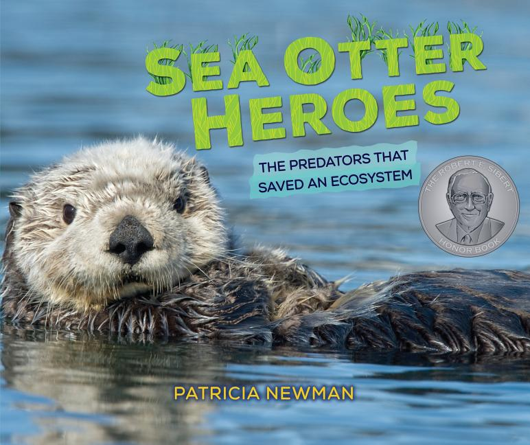 Sea Otter Heroes: The Predators That Saved an Ecosystem