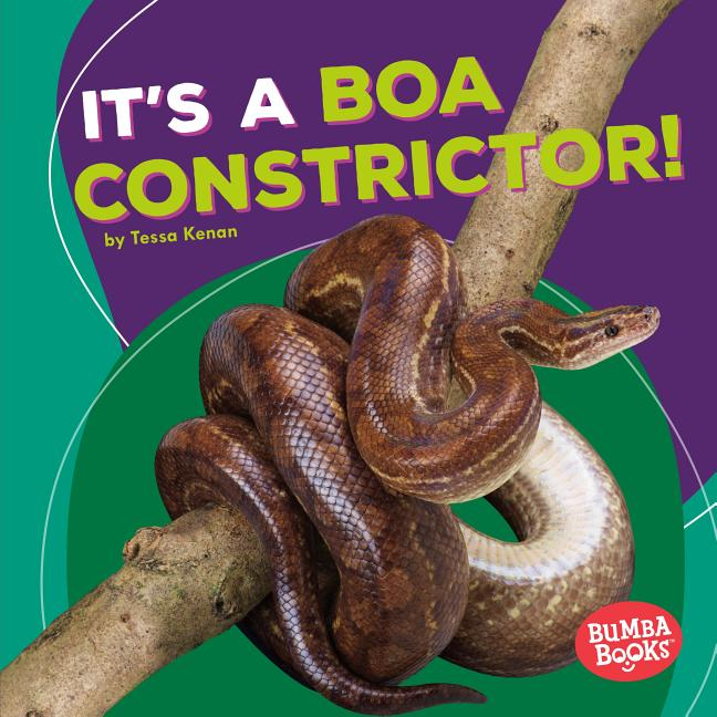It's a Boa Constrictor!