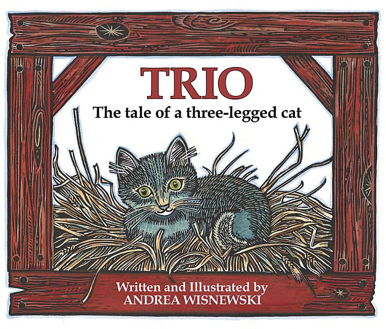 Trio: The Tale of a Three-Legged Cat