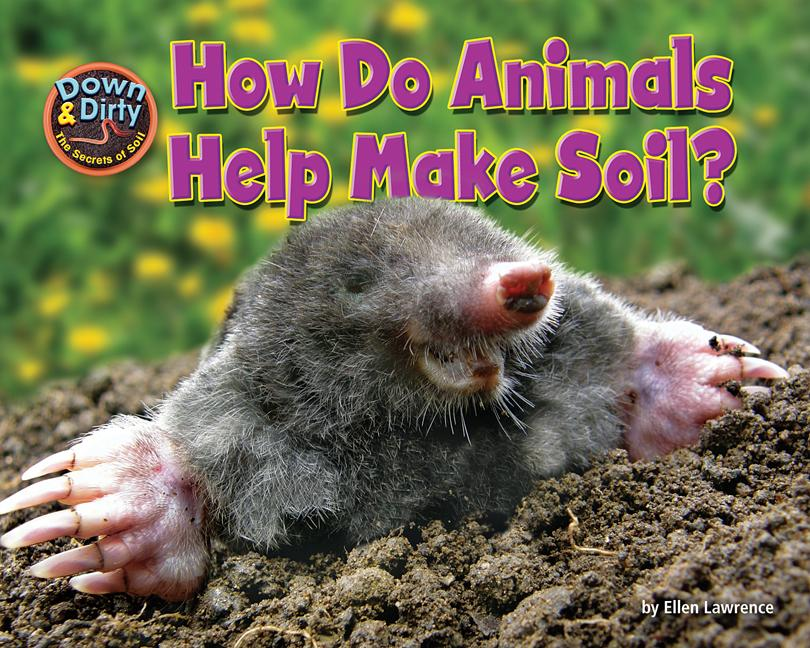 How Do Animals Make Soil?