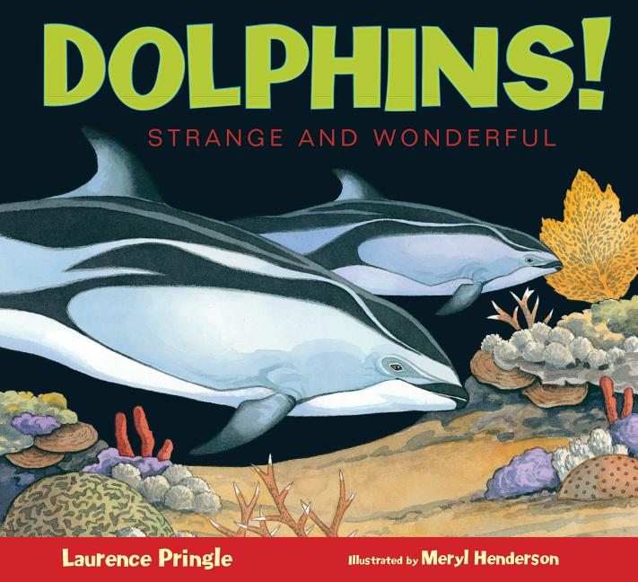 Dolphins!: Strange and Wonderful