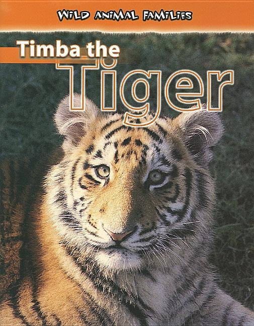 Timba the Tiger
