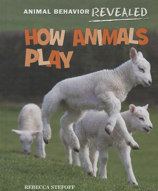 How Animals Play