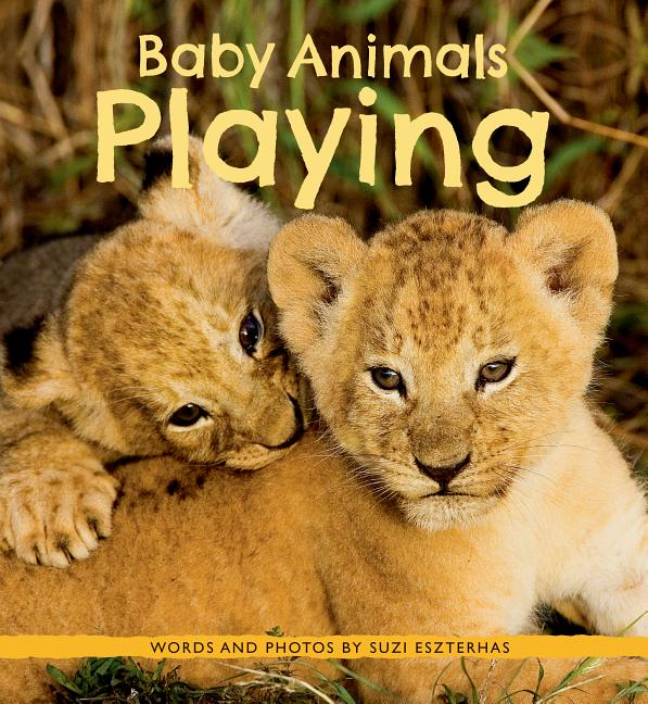 Baby Animals Playing