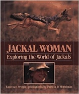 Jackal Woman: Exploring the World of Jackals