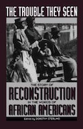 Trouble They Seen, The: Black People Tell the Story of Reconstruction