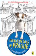 Circus Dogs of Prague, The