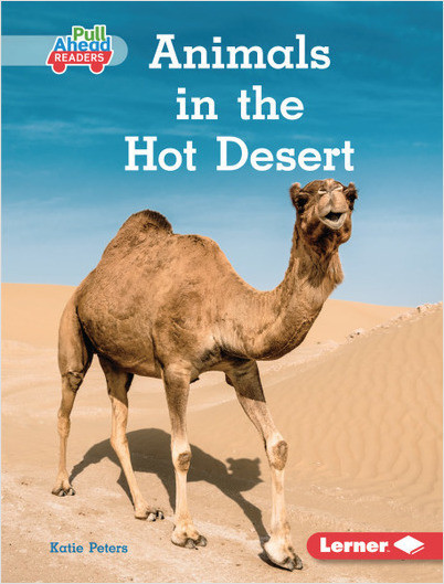 Animals in the Hot Desert